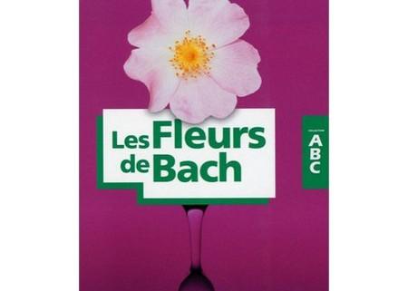 abc fleurs de bach